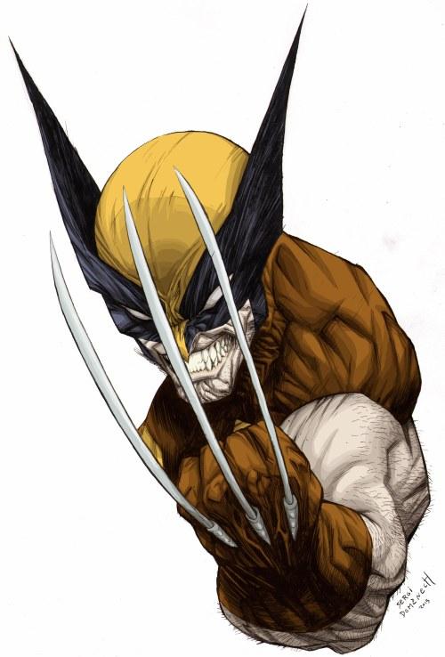 Wolverine web