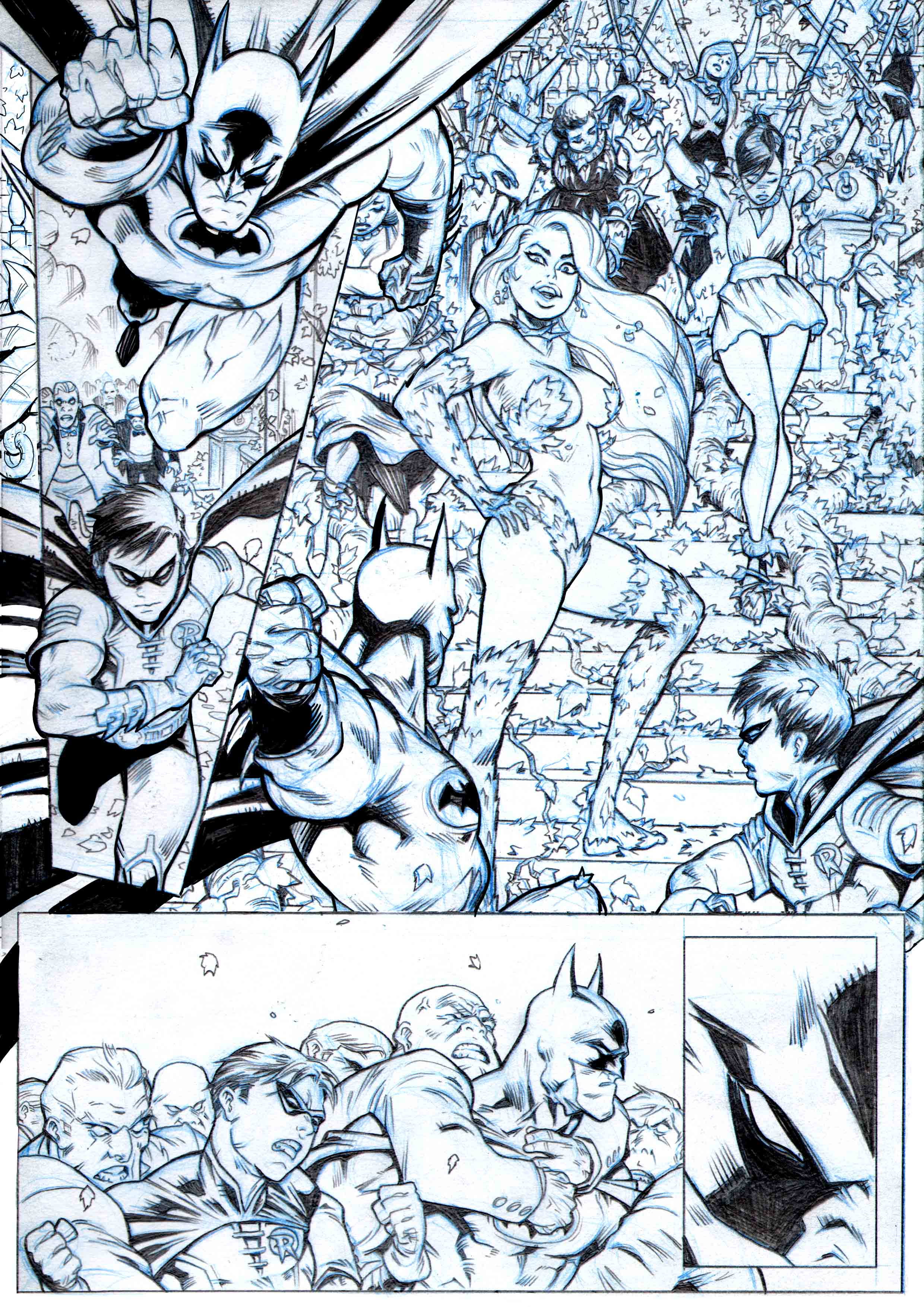 Robin page 12